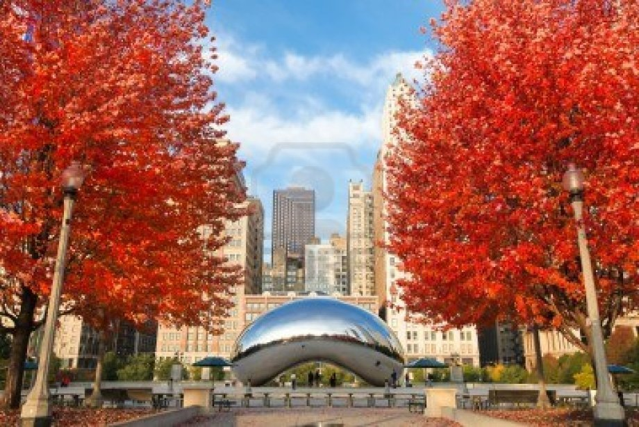 Obligatory fall-in-Chicago stock photo because I can't stop googling foliage and it goes vaguely with the post.